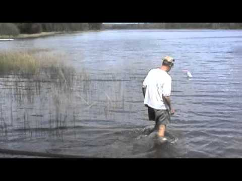 Clean Lakes - Trapping Rusty Crayfish