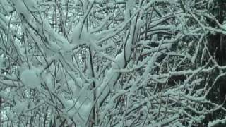 Sankey Valley in the Snow Films for Websites St.Helens Liverpool Merseyside