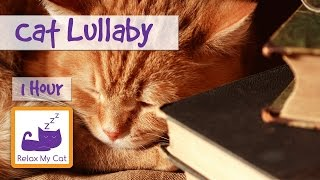 1 Hour Cat Lullaby, Soothing Sleep Music for Cats