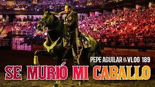 Pepe Aguilar - El Vlog 189 - Se murió mi caballo
