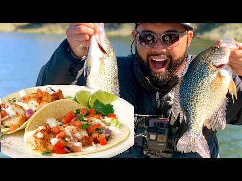 Cachuma Lake Trout Fishing Report 2019 And Crappie Tacos