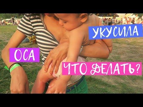 Раду Укусила Оса! Фестиваль Veda Life в Украине. Вкусная еда, кулинарные семинары и тренировки