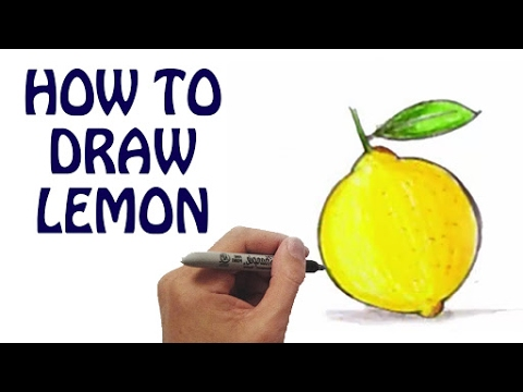 Learn How To Draw Lemon In Easy Steps Draw Fruits Vegetables Basic Drawing Lessons For Kids