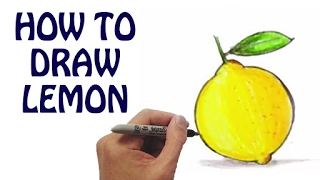 Learn How To Draw Lemon in Easy Steps   Draw Fruits & Vegetables   Basic Drawing Lessons For Kids