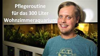 Pflegeroutine für das 300 Liter Wohnzimmeraquarium!