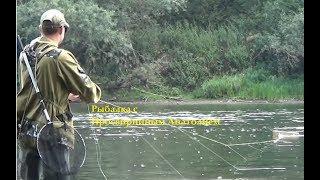Рыбалка с Просвирниным Анатолием Реверсивный кораблик ''Tosya''