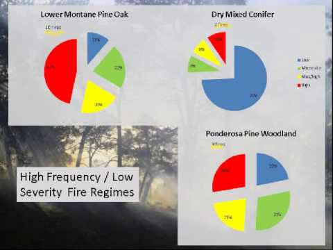 Fire Legacy's Role in Current and Future Fire Management in the Southwestern United States