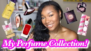 Perfume Collection Part 1 | My Designer Fragrances!