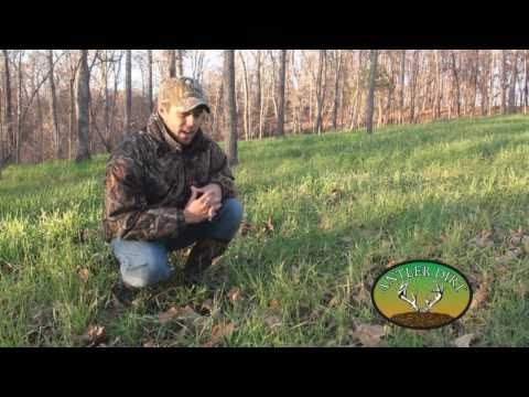 Buck Hunts and Winter Foodplots for Deer and Turkey