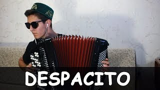 DESPACITO на БАЯНЕ