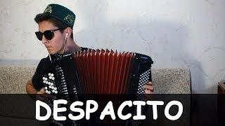 Download DESPACITO на БАЯНЕ Mp3 and Videos