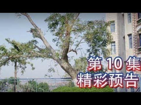 班长大人 10丨The Big Boss 10(主演:李凯馨,黄俊捷)【精彩预告片】
