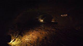 【4K】Bats cave in Aokigahara forest near mt. Fuji