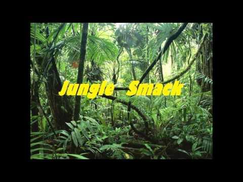 Jack Ü VS Mike Cervello & Cesqeaux - Jungle Smack(Alex Sinesi Mashup)Played By Jack Ü,Skrillex&Diplo