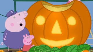Peppa Pig English Episodes | Pumpkin Competition  Peppa Pig Official