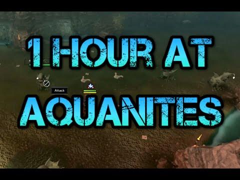 Aqua-Nites The Aqua-Nites Carioca / Lover Don't You Weep