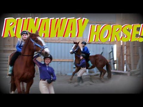 RUNAWAY HORSE! Day 110 (04/20/18)
