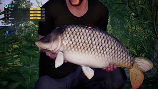 euro fishing 04 tournoi