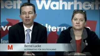 Die AfD: rechtspopulistisch und demokratiefeindlich?