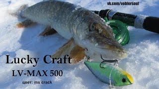 Ловля на ратлин со льда  Щука на LV-MAX 500 от Lucky Craft