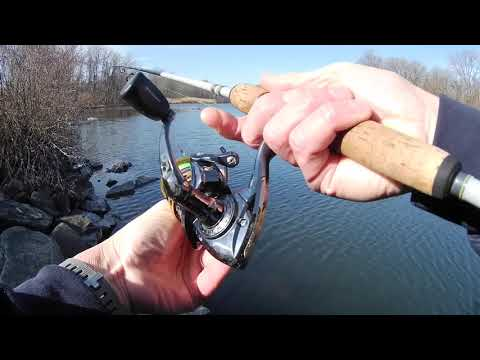 Catching Marsh Creek Bass On Spinnerbaits