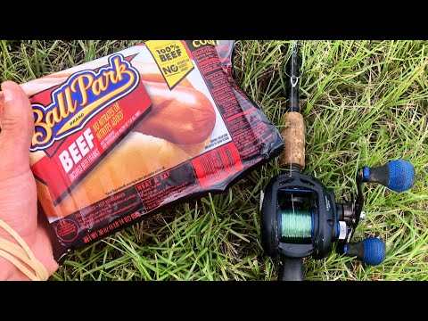 MONSTER CATCHES Using HOT DOGS As BAIT!!