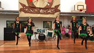 CWBS 2015 School Fair - Echoes of Erin dancers