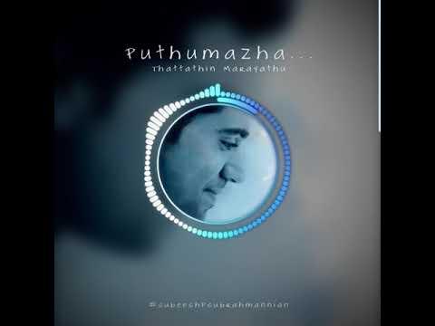 Puthumazha | Thattathin Marayathu | BGM | UpdatesMedia