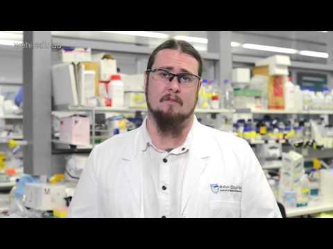 Pozible project - malaria vaccine research