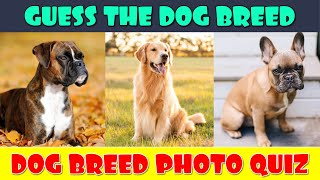 Dog Breeds Quiz | Guess the Dog Breed | Dogs Quiz Game | Animal Quiz