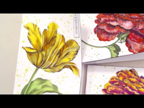 LIVE STREAM REBROADCAST: How to Alter Cards With Pastels and Silk Glazes with Barb Owen