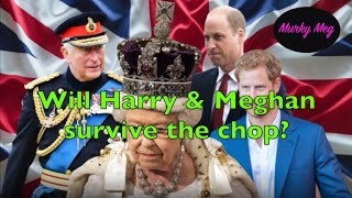 Will Harry & Meghan make the Royal family cut after Prince Charles slims down the Royal Family?