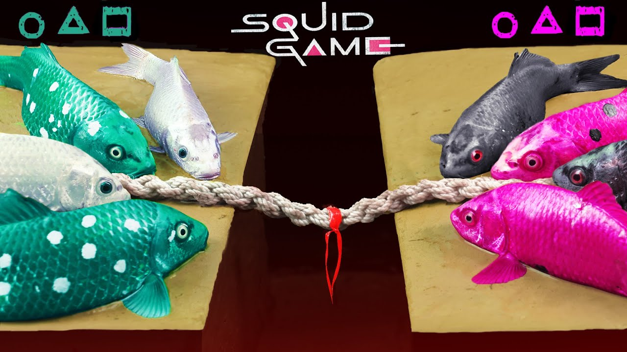 Squid Game   TUG OF WAR   Colorful Carp Battle Experiment Satisfying ASMR   Stop Motion Cooking