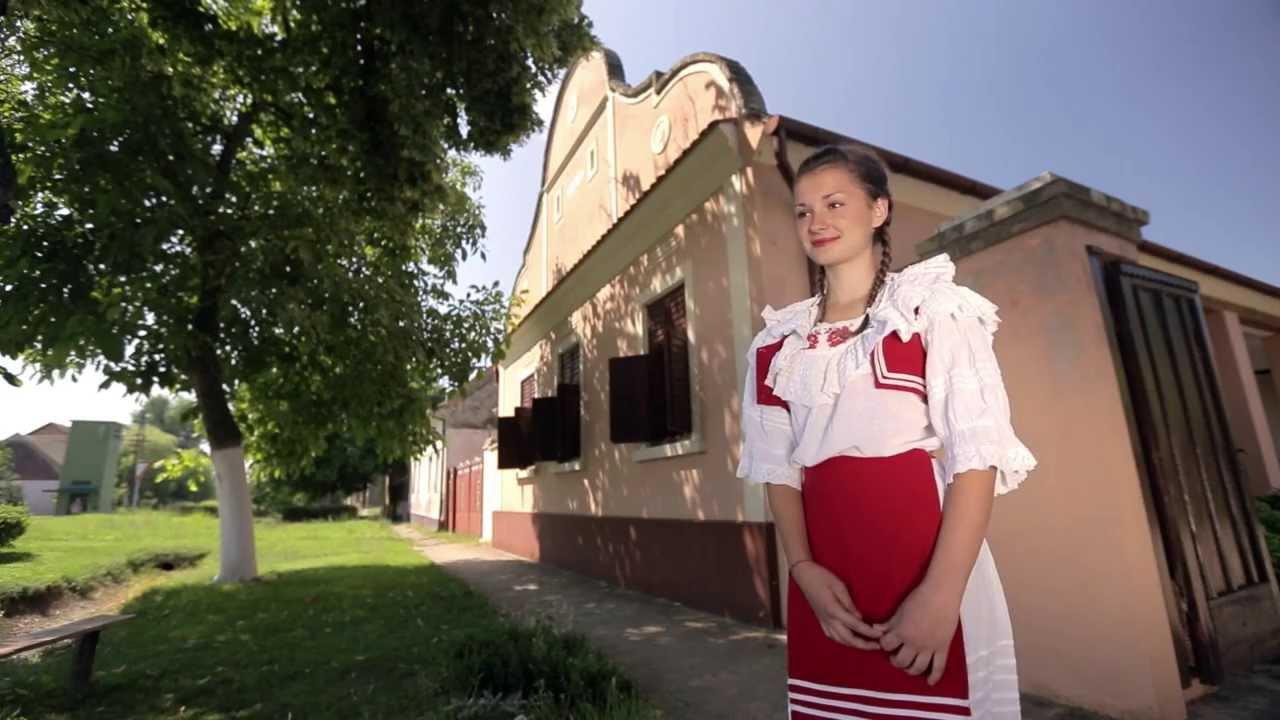 Vojvodina Net ( filmovi i serije besplatno gledanje www ...