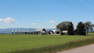 2050 Holt Stage Rd - Kalispell Farm for sale - Montana