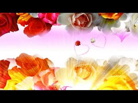 HD Wedding Background, Flower Free Background thumbnail