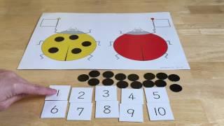 数字と量の対応という教材で遊んでいきます てんとうむしさんにドッツを...