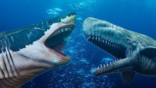 Megalodon Vs Livyatan - Who Would Win?
