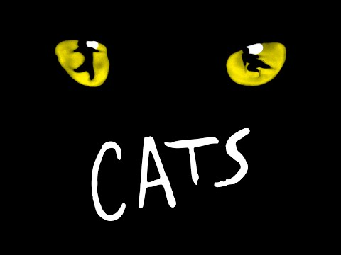 CATS Review Blackpool Starring Jane McDonald Opera House Andrew Lloyd Webber Musical
