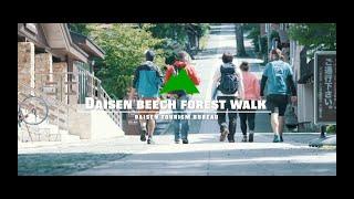 Daisen beech forest walk 大山ブナの森ウォーク