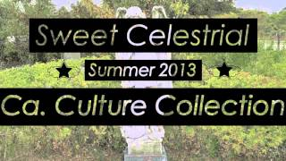 California Culture Collection Promo