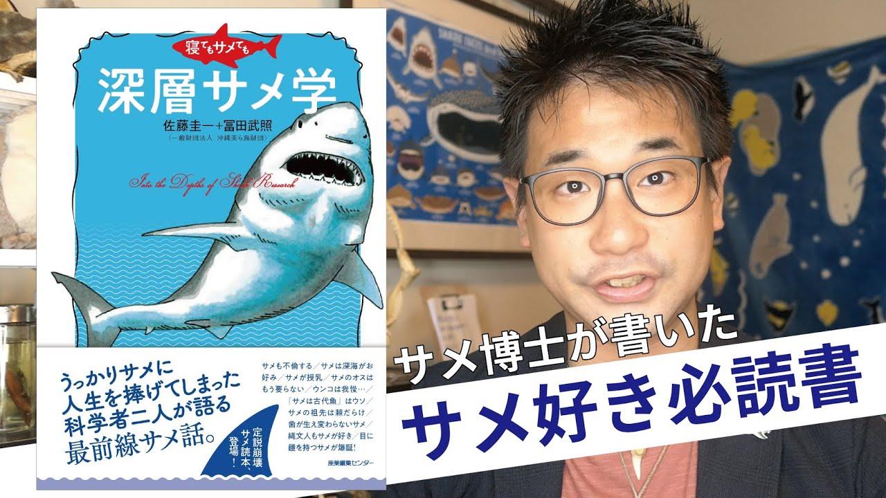 最新サメ本紹介!トップレベルのサメ研究者が書いた『寝てもサメても 深層サメ学』が面白過ぎる!