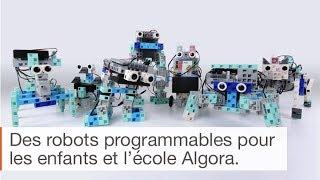 Apprendre la programmation avec les robots pédagogiques et l'école Algora