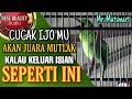 Cucak Ijo Gacor Tembakannya Bikin Merinding Mantap  Mp3 - Mp4 Download