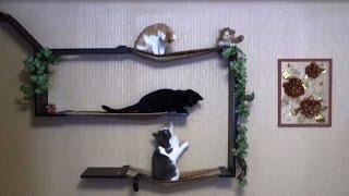 Полка для кошек своими руками.