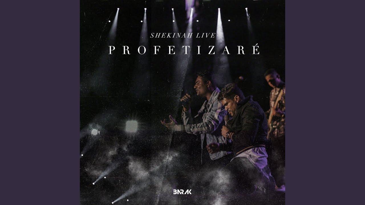 Profetizaré (Shekinah Live)