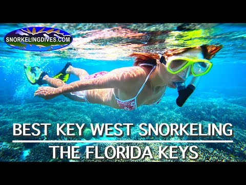 Best Key West Snorkeling