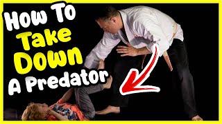 HOW TO TAKE DOWN A PREDATOR