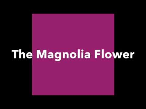 The Magnolia Flower-
