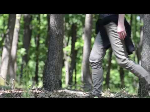 Walk in the Woods FREE Stock Video